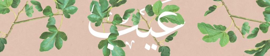 Eib | disadvantage