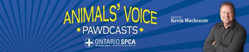 Animals' Voice Pawdcast