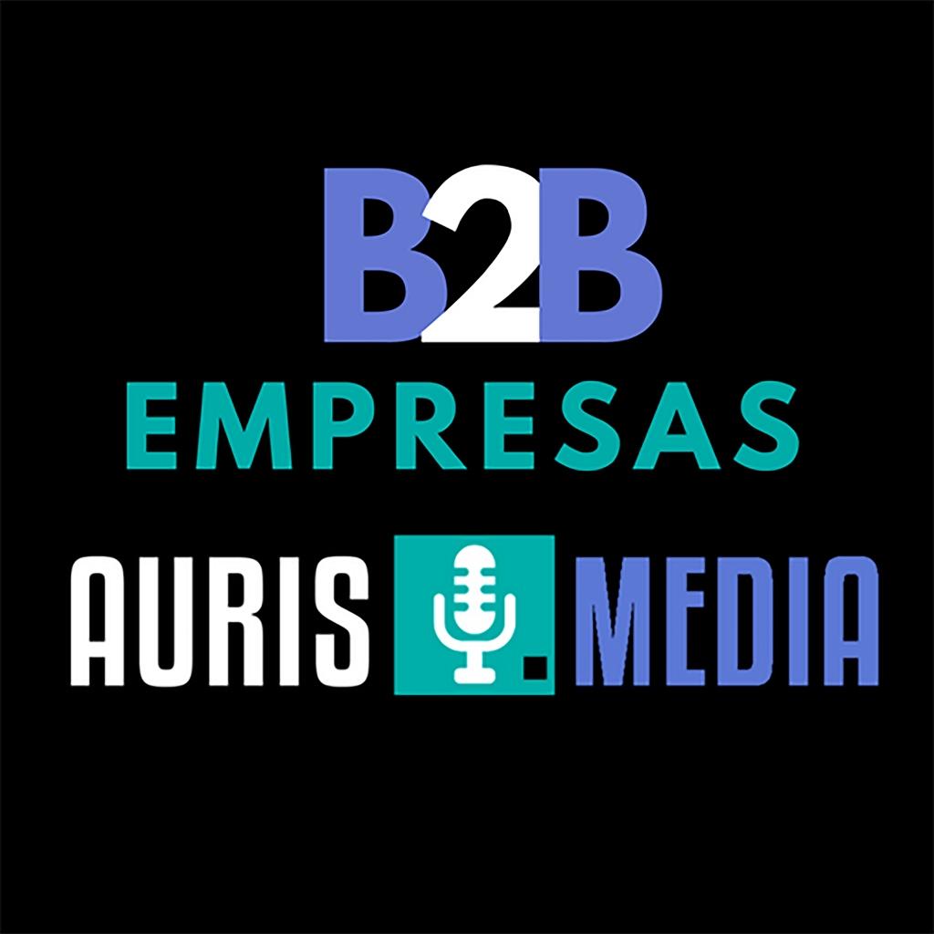 Strategies for B2B companies