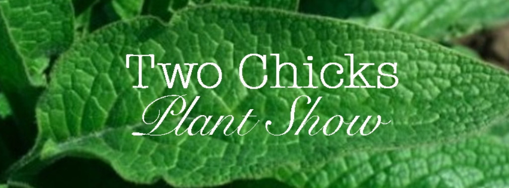 Two Chicks Plant Show
