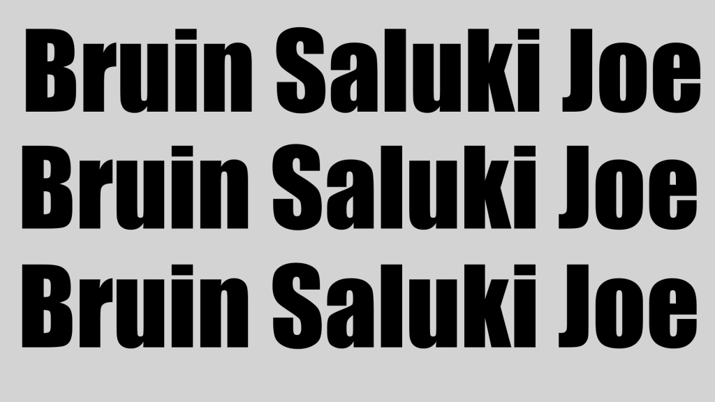 The Bruin the Saluki and Joe