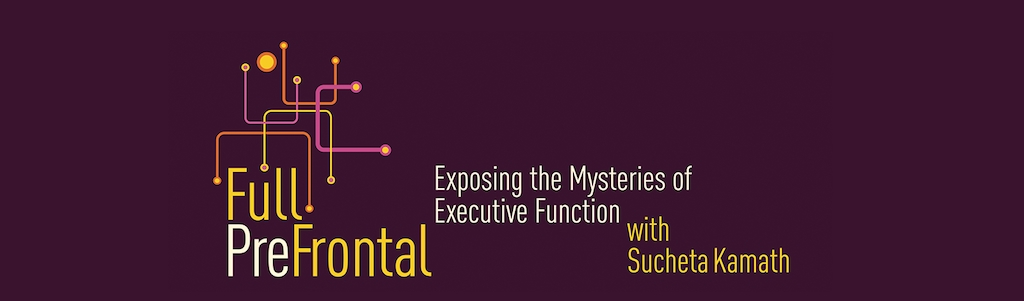 Full PreFrontal: Exposing the Mysteries of Executive Function