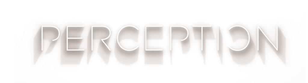 The Perception Podcast