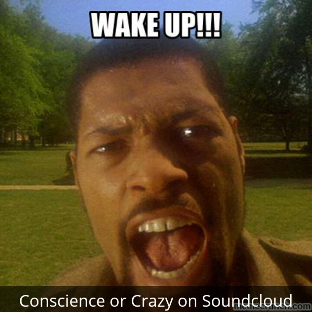 ConscienceorCrazy??
