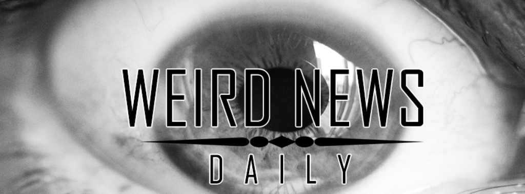 Weird News Daily