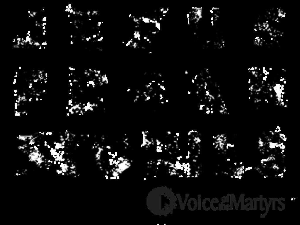 Amplify the Voice