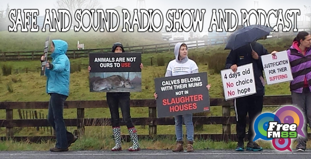 Safe and Sound Radio Show and Podcast