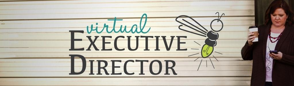Virtual Executive Director