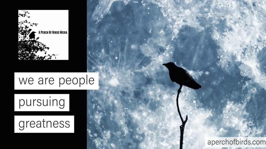 A Perch of Birds Podcast
