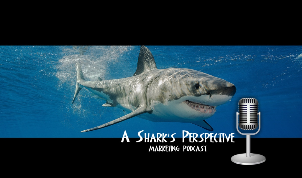 A Shark's Perspective