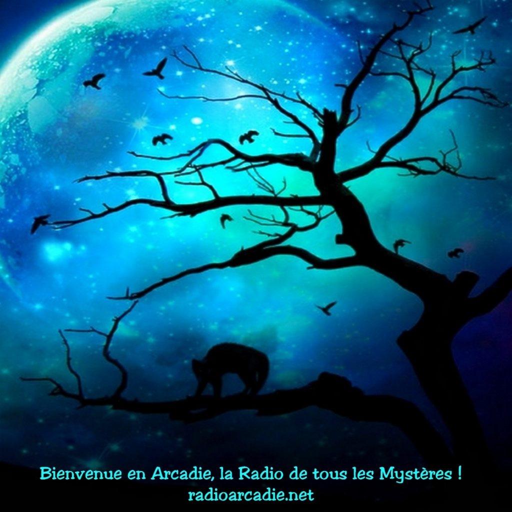 Replay - Bienvenue en Arcadie !