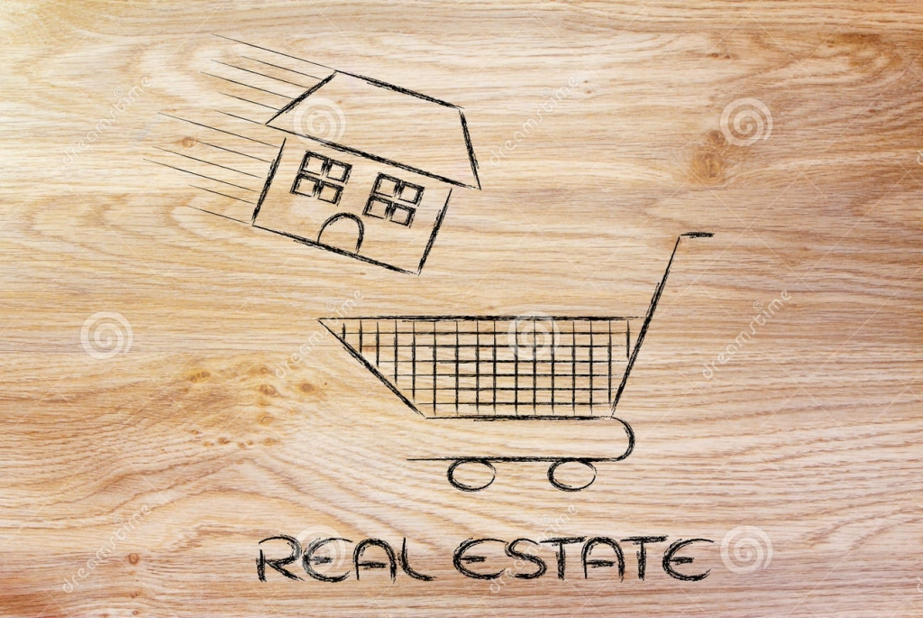 Mike Gray Real Estate