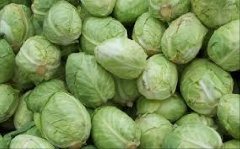 The Happy Cabbage