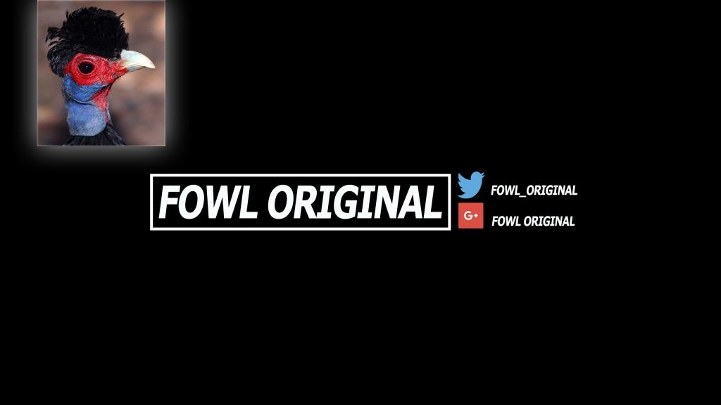 The Fowl Original Podcast