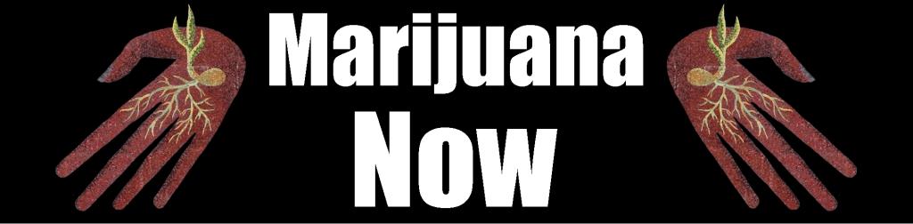 Marijuana Now!