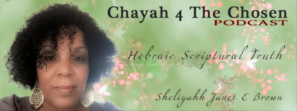 Chayah 4 The Chosen