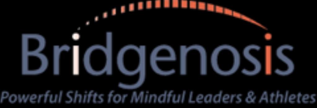 Bridgenosis Mindful Leadership