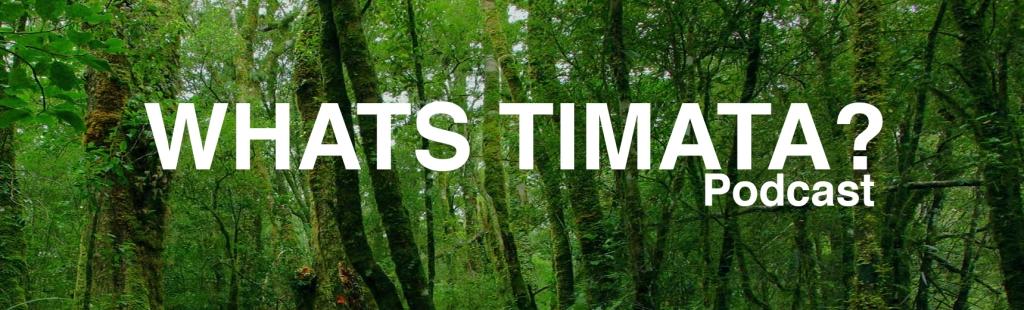 Whats Timata?