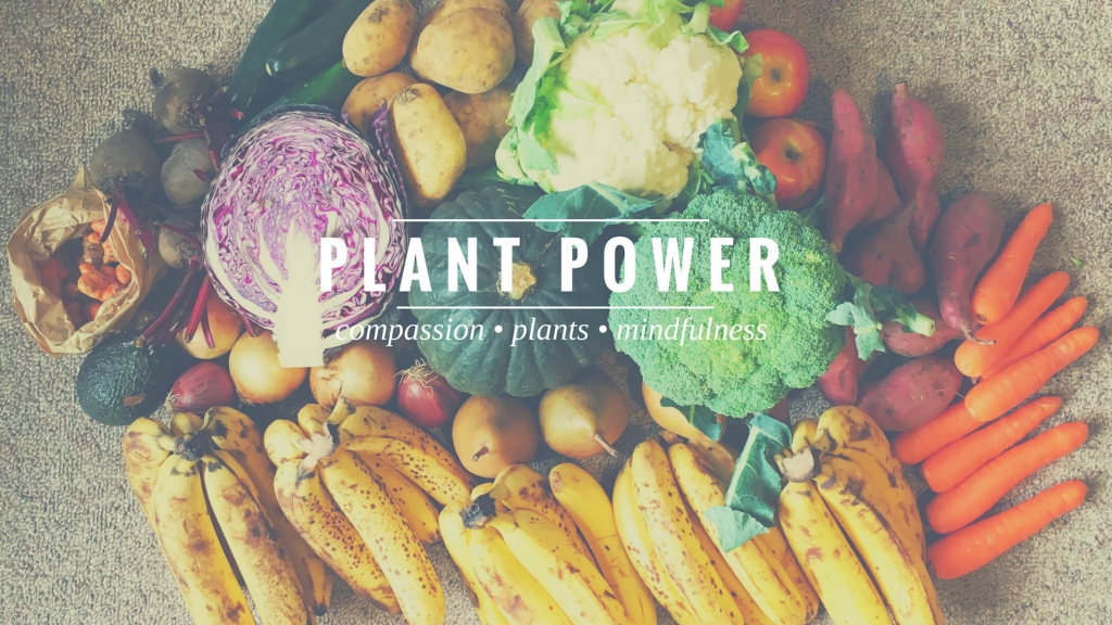 Plant Power Podcast