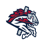 Binghamton Rumble Ponies Baseball Network