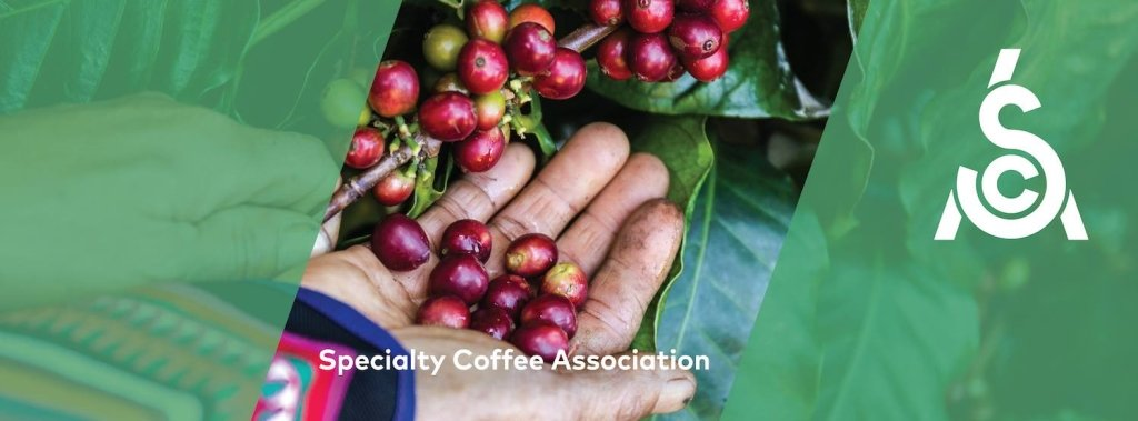 Specialty Coffee Association Podcast