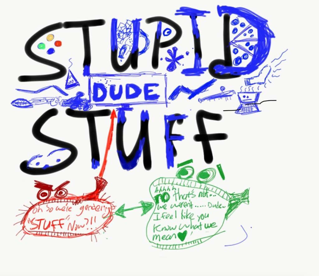 Stupid Dude Stuff
