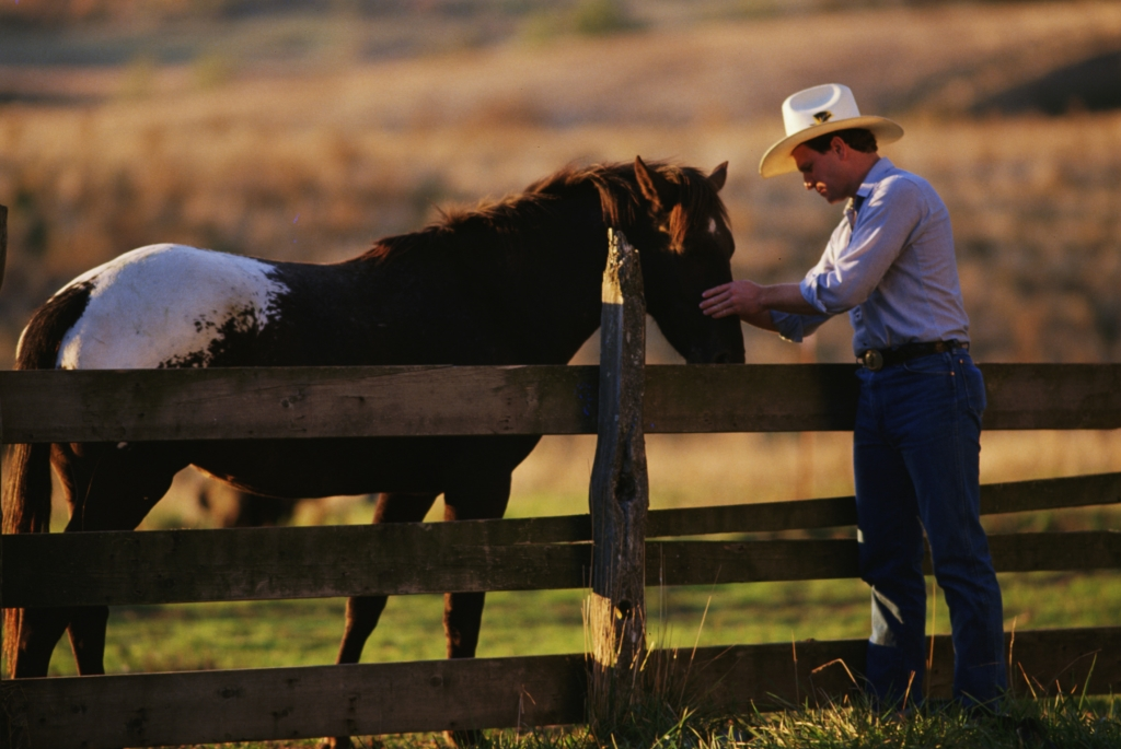 American Farriers Journal Podcast