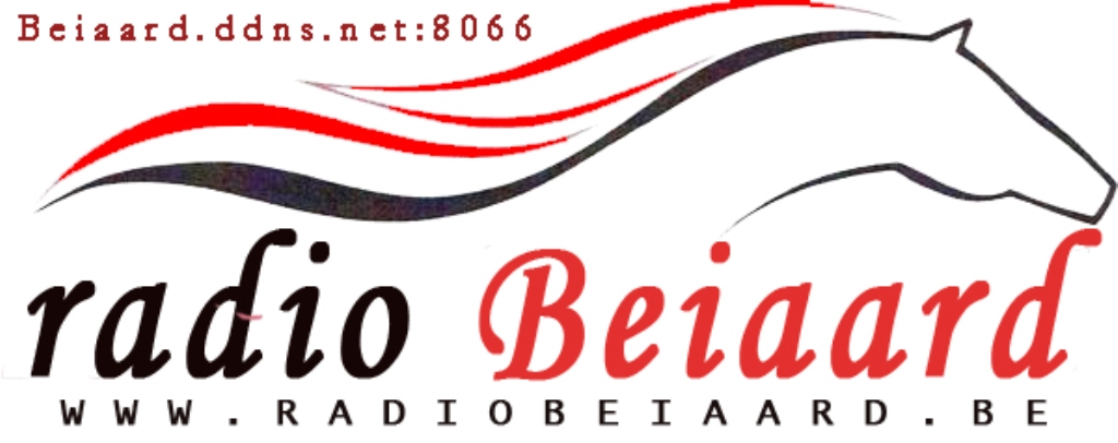 Beiaard radio