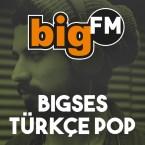 bigFM bigSES