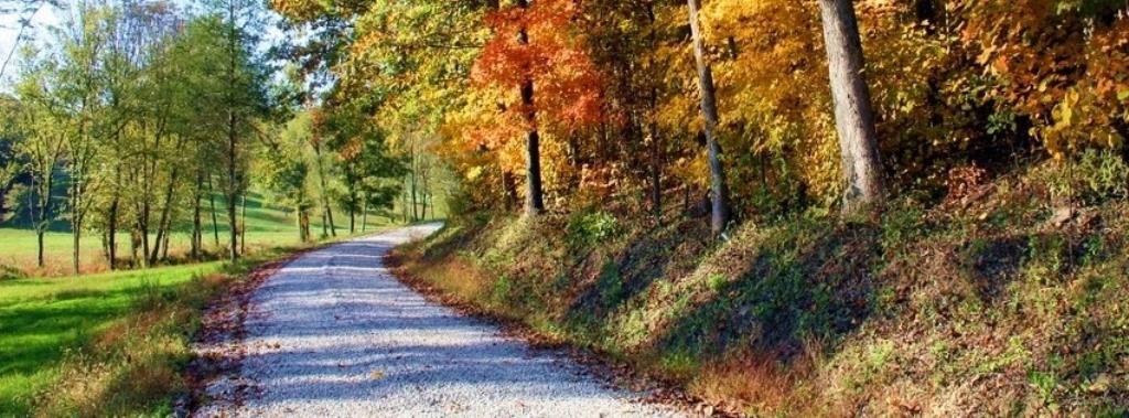 County Road Country - Binghamton