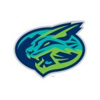 Lynchburg Hillcats Baseball Network