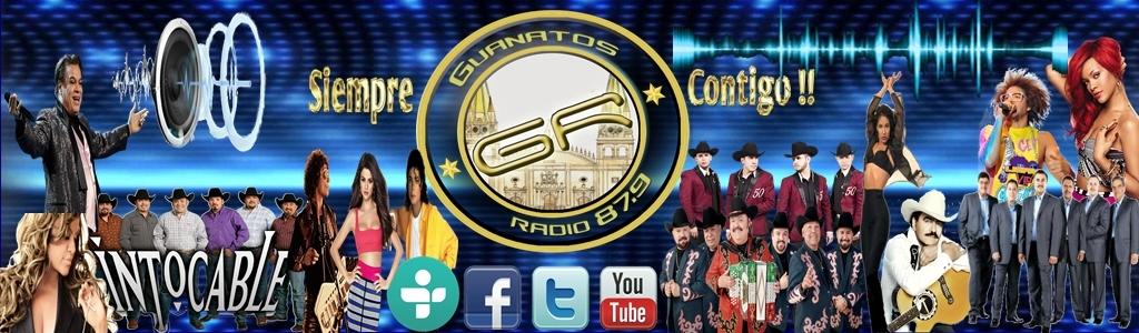 Guanatos Radio87.9