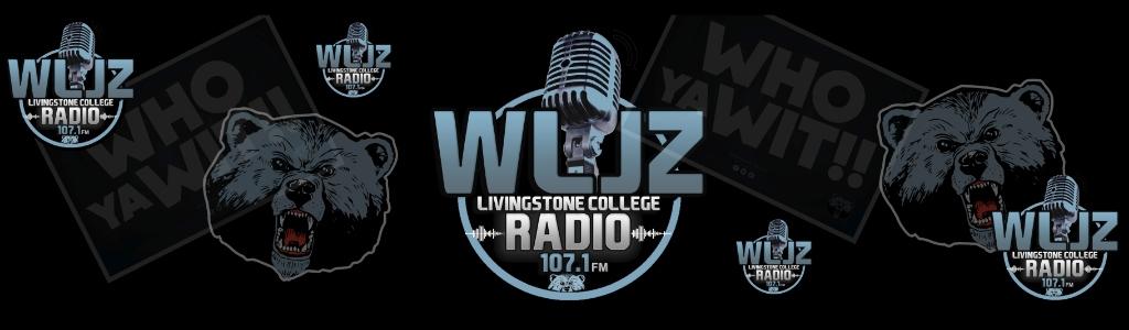 WLJZ 107.1 FM